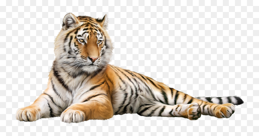 Serigala Harimau Dan Singa, HD Png Download