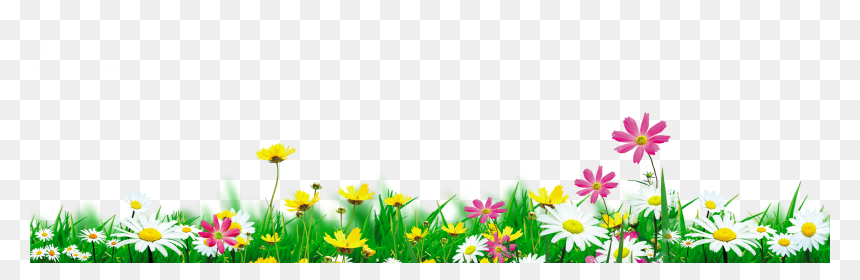 Nature Background Png Free Download, Transparent Png