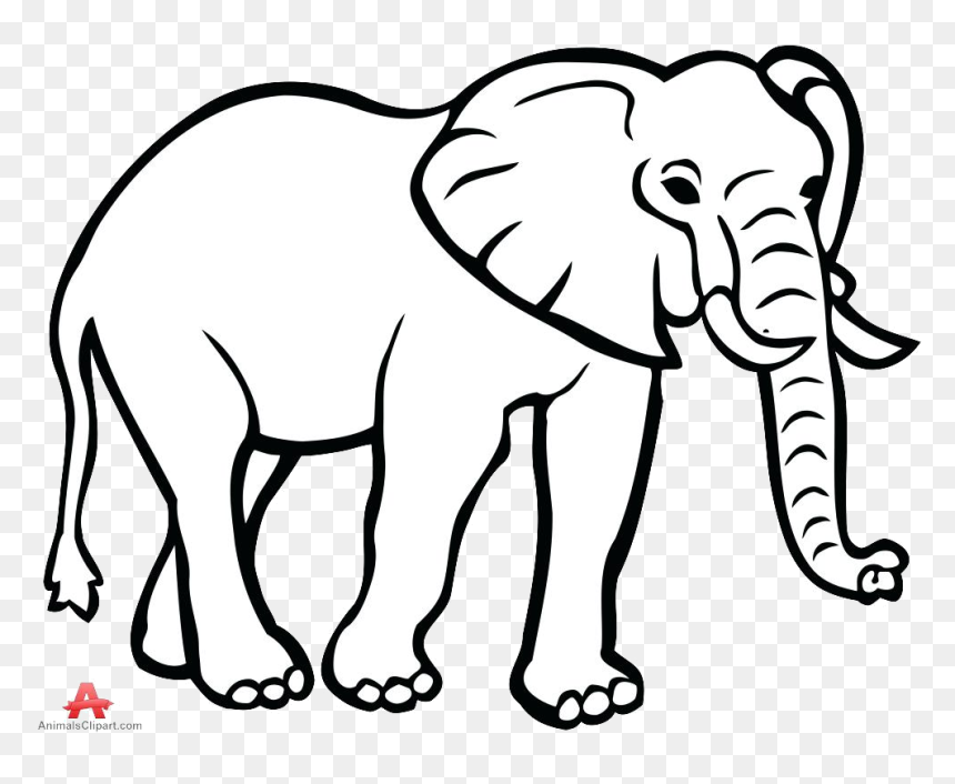 Elephant Outline Drawing Face Clipart Free Transparent Outline Image Of Elephant Hd Png Download 999x782 Png Dlf Pt Including transparent png clip art, cartoon, icon, logo. dlf pt
