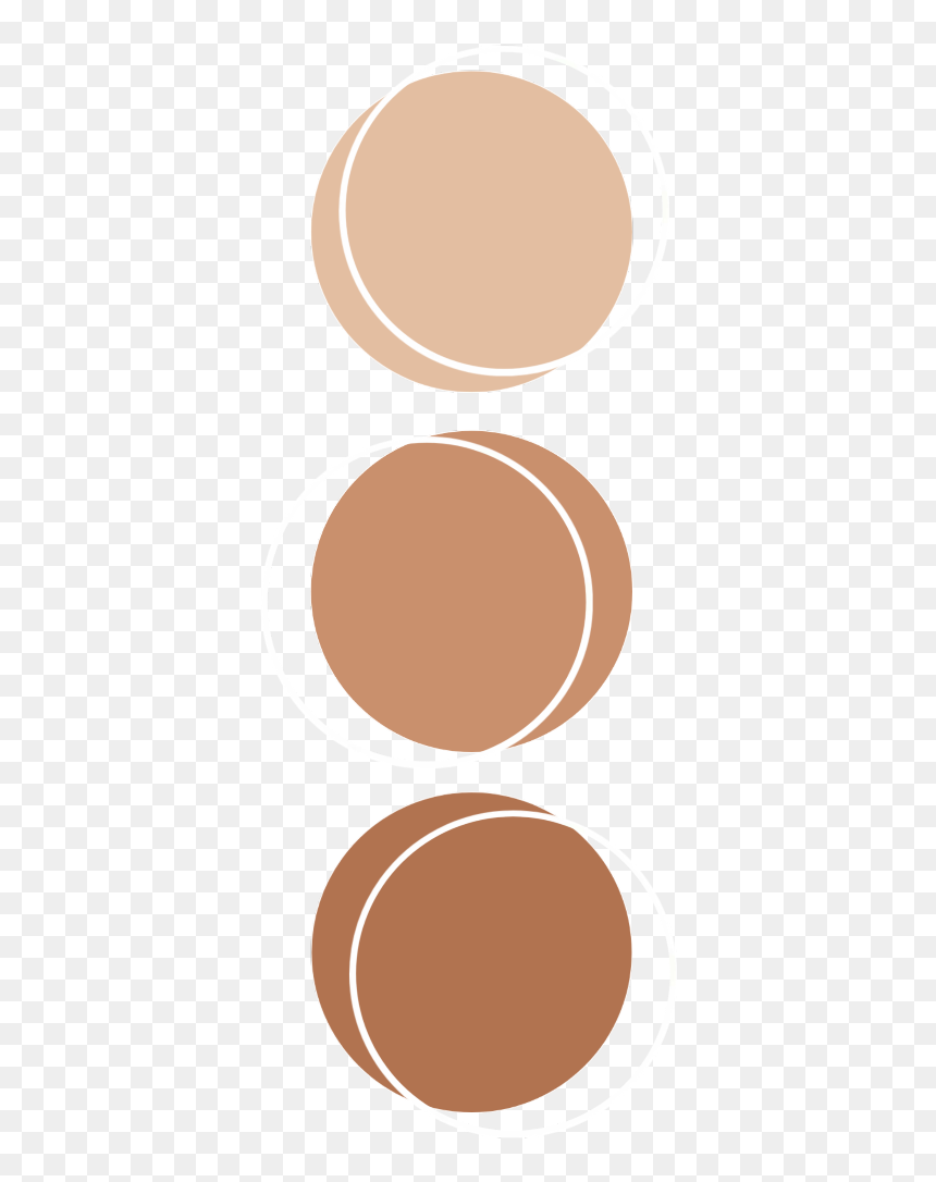 Color Brown Palette Anatomy Aesthetic Kpop Aesthetic Color Palette Circle Hd Png Download 1024x1024 Png Dlf Pt
