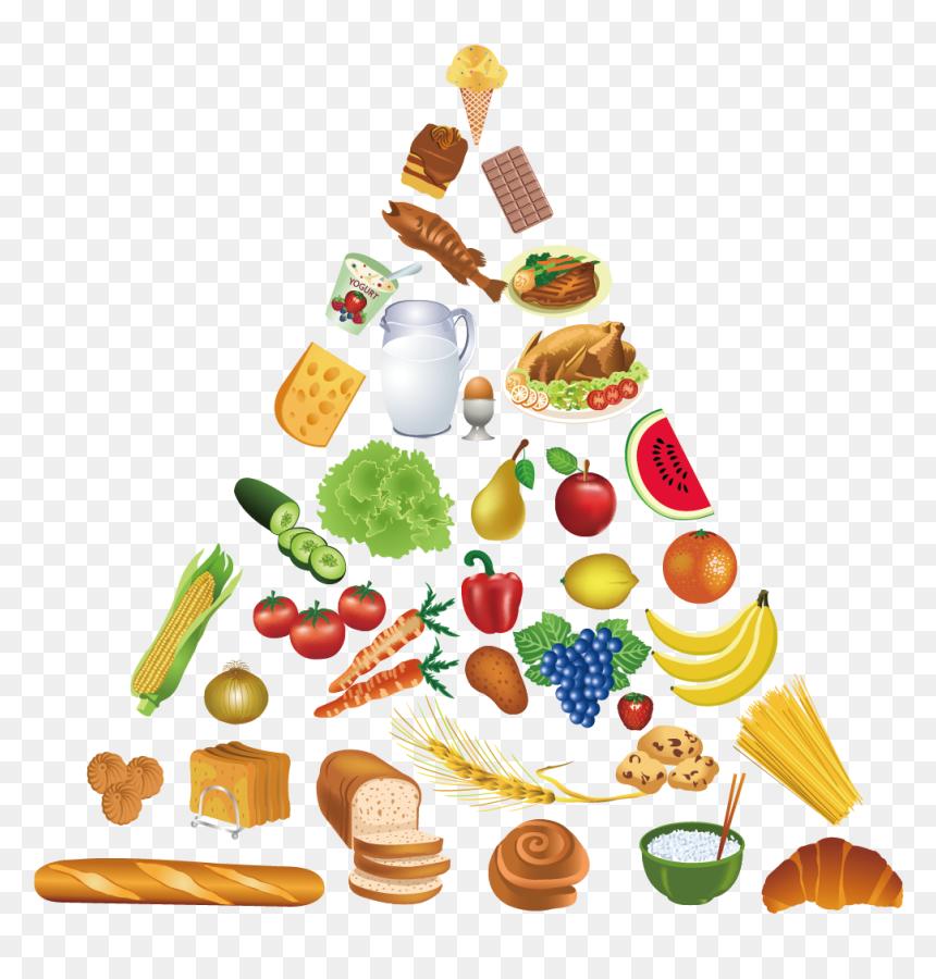 Food Pyramid Healthy Eating Pyramid Clip Art Food Pyramid Vector Hd Png Download 1181x1181 Png Dlf Pt