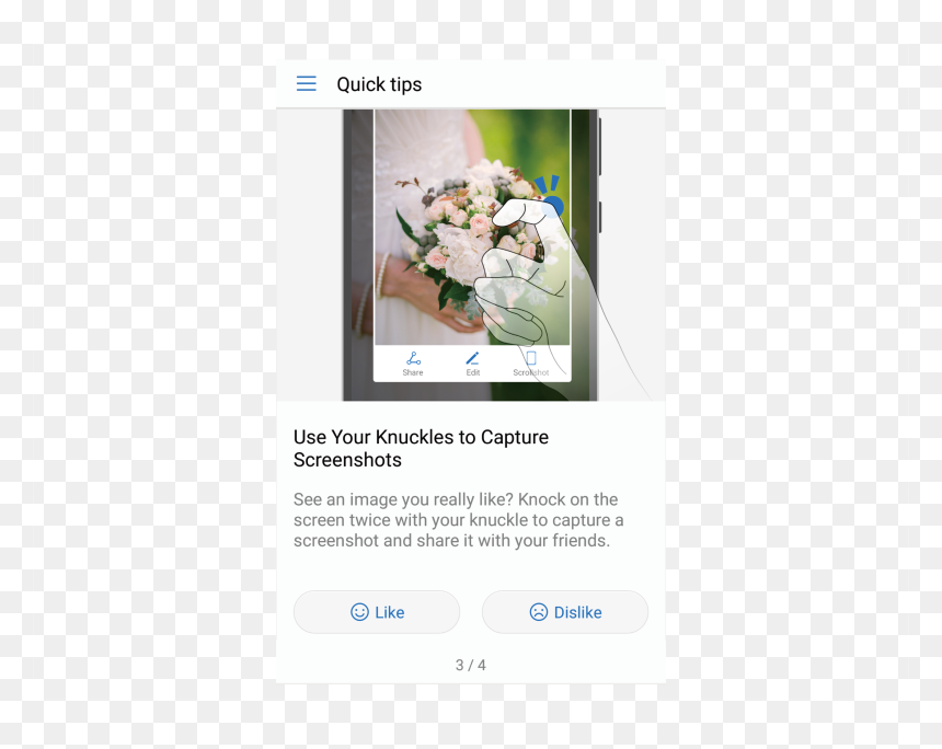 Tips App Function - Bouquet, HD Png Download