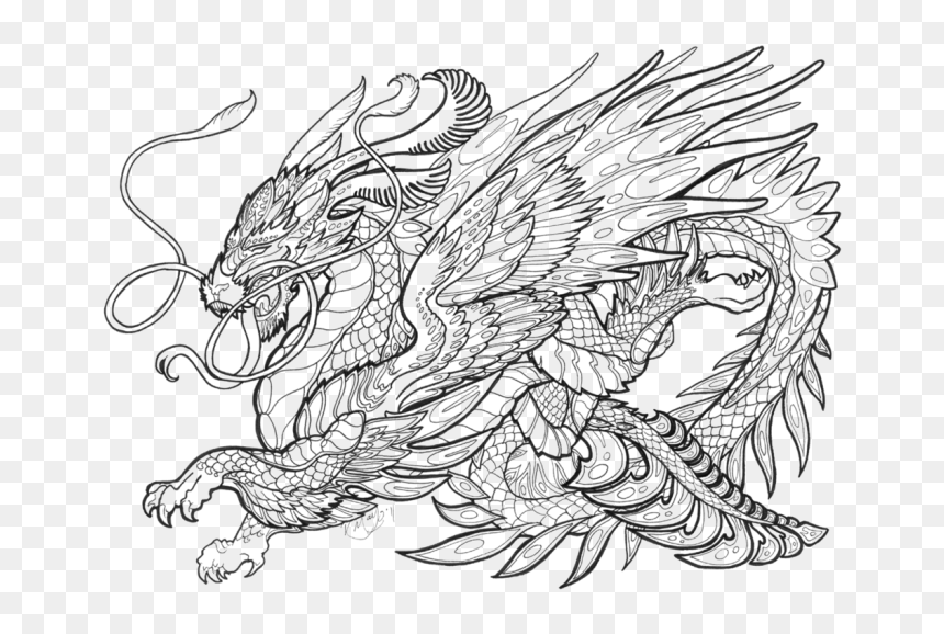 Transparent Medieval Dragon Clipart Black And White Dragons Coloring Pages Printable Hd Png Download 674x498 Png Dlf Pt