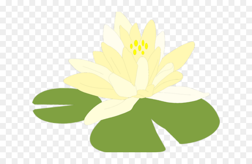 Lily Pad Clipart Lilipad Lily Pads Transparent Background Hd Png Download 640x480 Png Dlf Pt