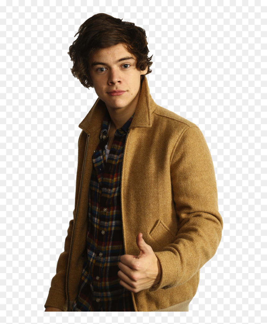 Transparent Harry Styles Full Body Png - Harry Style Png Transparent, Png Download