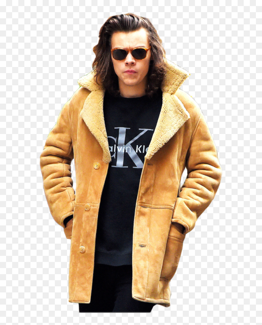 Thumb Image - Transparent Png Harry Styles, Png Download