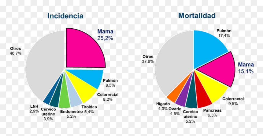 Cáncer De Mama En América - Incidencia Del Cancer De Mama, HD Png Download