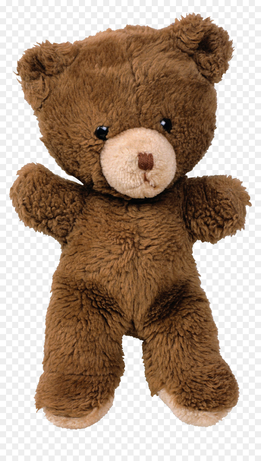 Old Teddy Bear Png Transparent Png 600x1031 Png Dlf Pt