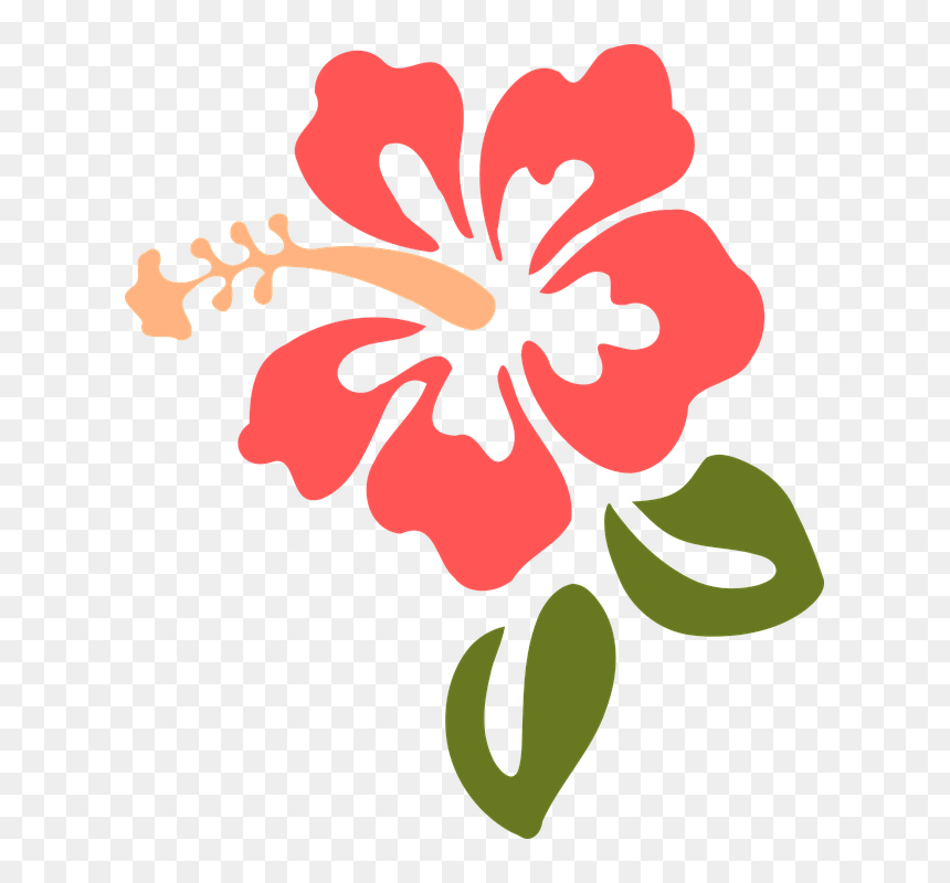 Hibiscus Clipart, HD Png Download