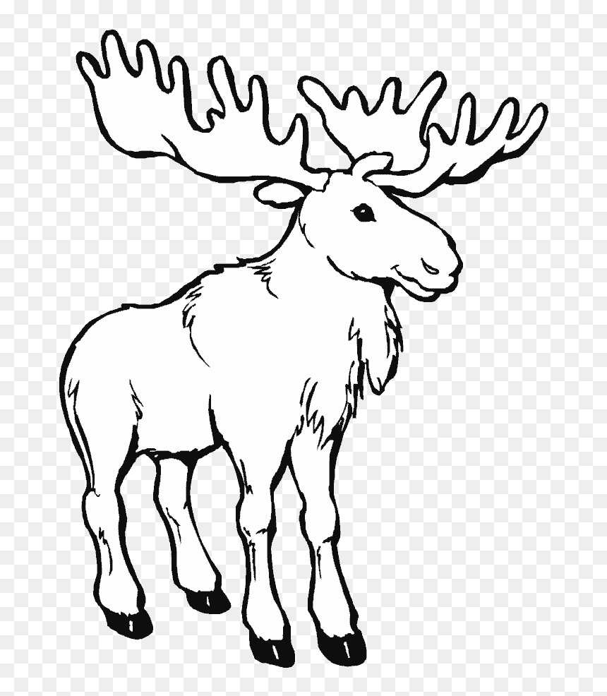 Png Library Animals Printable Coloring Pages Page - Moose Coloring Page, Transparent Png