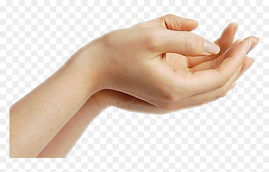 #hand #giving #hands - Woman Hands Png, Transparent Png