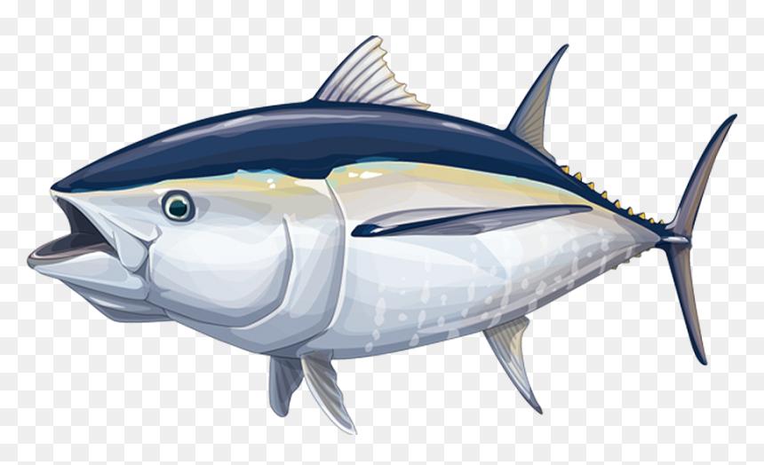 ikan tuna sirip biru hd png download 900x507 png dlf pt dlf pt