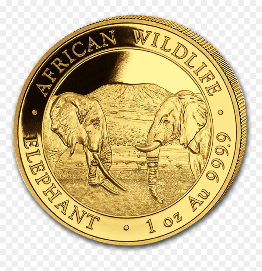 2020 1 Oz Somalia Elephant 9999 Gold Coin Bu Gold Elephant Coin 2020 Hd Png Download 900x900 Png Dlf Pt Pikbest has 200 gold elephant design images templates for free. dlf pt
