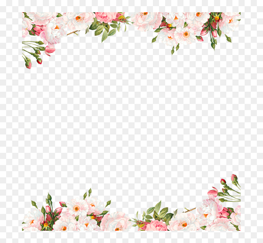 Pink Floral Border Png, Transparent Png