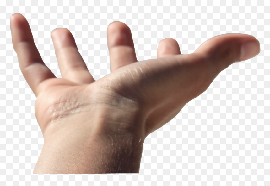 Transparent Open Hand Png - Human Open Hand Png, Png Download