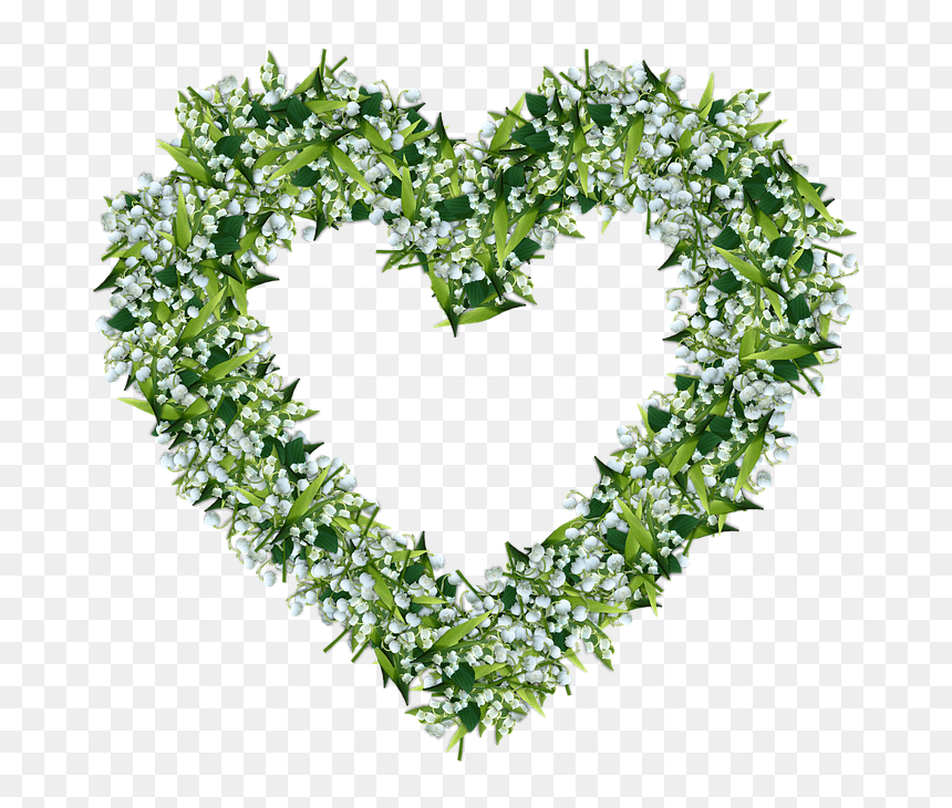 Lily Of The Valley Heart, HD Png Download - 720x720 PNG ...