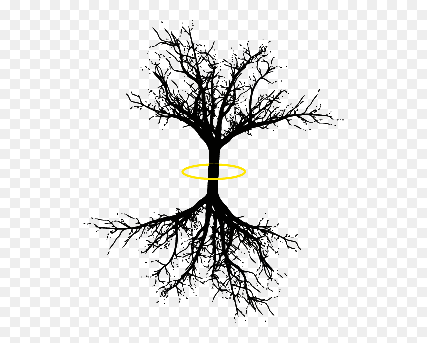 Tree Of Life Png Dead Tree Tattoo Drawing Transparent Png 695x695 Png Dlf Pt 925 silver tree of life friendship charm necklaces unisex stylish kabbalah gift. tree of life png dead tree tattoo