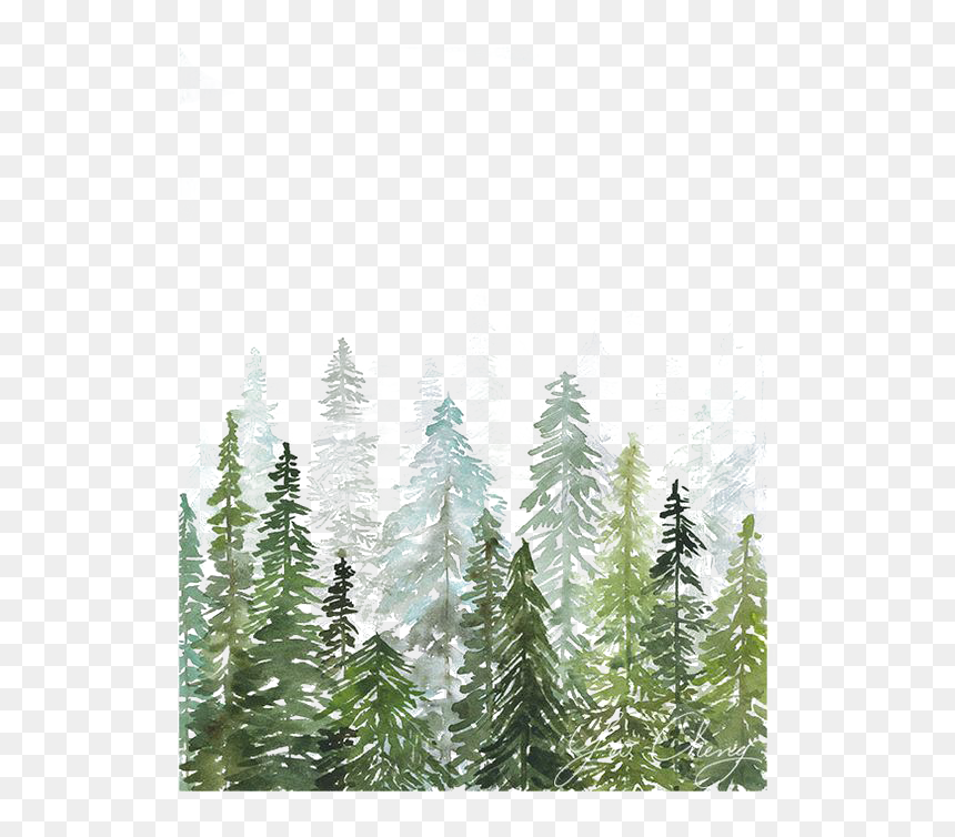 Watercolor Painting Printmaking Printing Drawing Watercolor - Watercolor Pine Tree Forest, HD Png Download