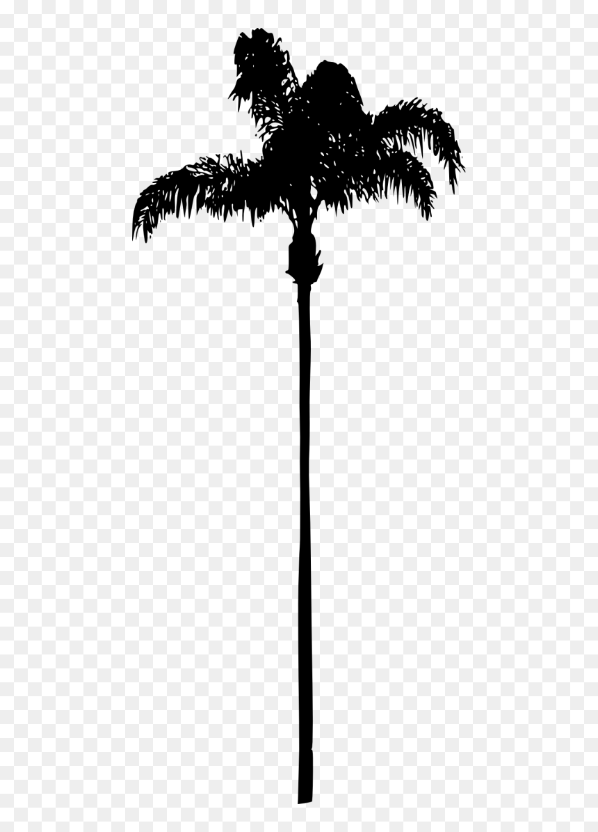 Palm Clipart Watercolor - Palm Trees No Background, HD Png Download