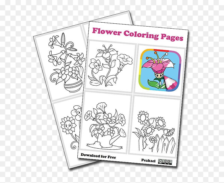 Flower Coloring Pages - Uclan Su, HD Png Download
