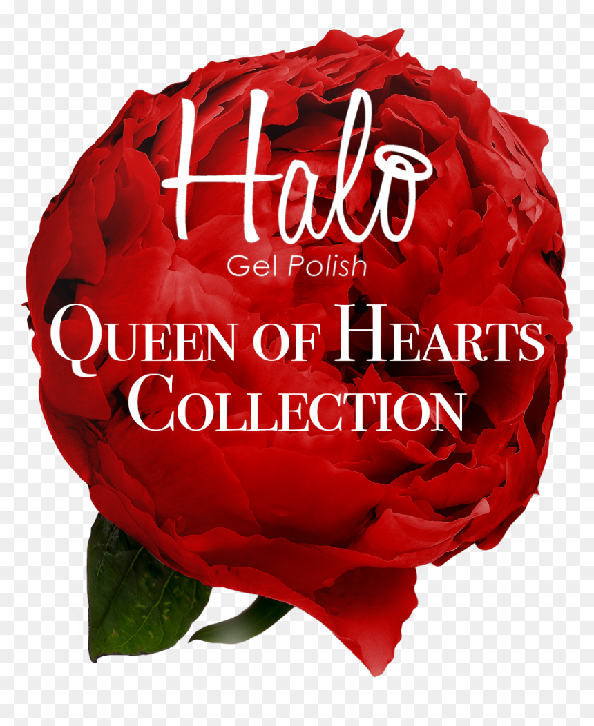 Introducing The Halo Gel Polish Queen Of Hearts Collection, - Whitney High School, HD Png Download