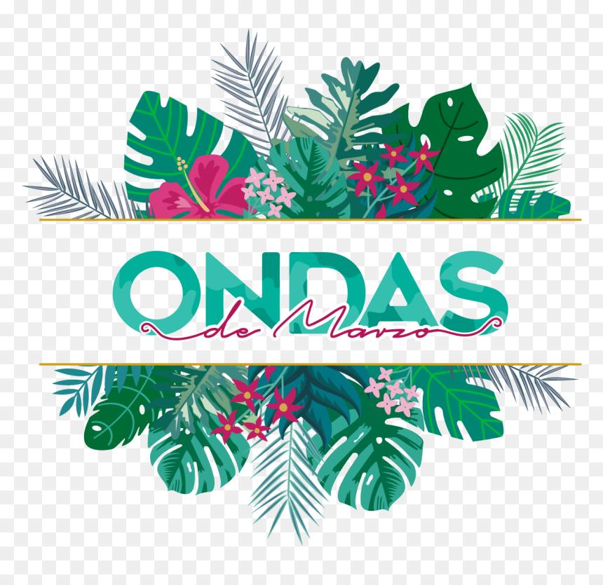 Web-01 - Ondas De Marzo, HD Png Download