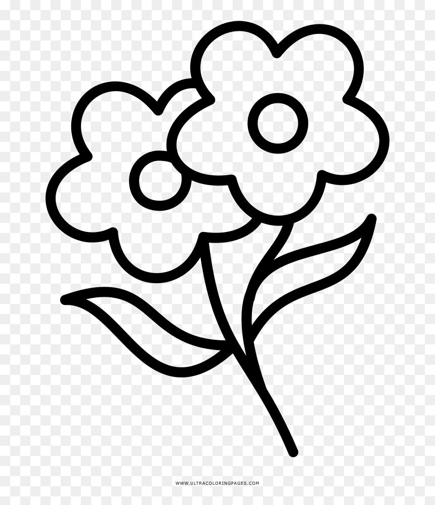 Flowers Coloring Page - Black And White Flower Coloring Page, HD Png Download